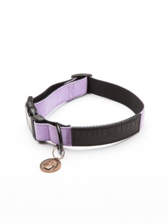 Hendrix Dog Collar