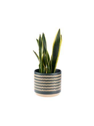 Dawn Planter Pot 25cm