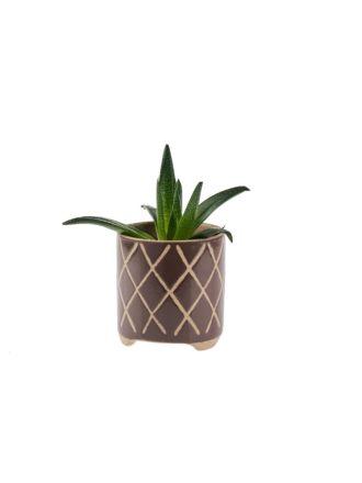 Estrada Coffee Planter Pot 16cm
