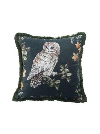Owlbert Cushion 50x50cm