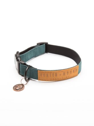 Wild One Dog Collar