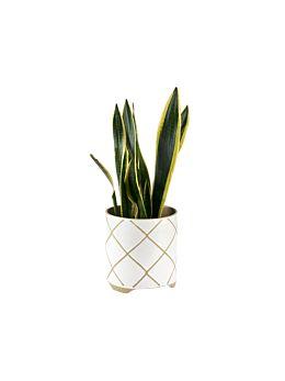 Estrada White Planter Pot 24cm