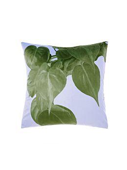 Shakira Cushion 48x48cm