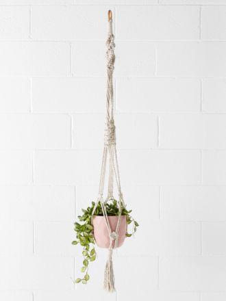 Woodstock Pot Plant Hanger 20cm