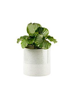 Caitlin Green Planter Pot 24cm